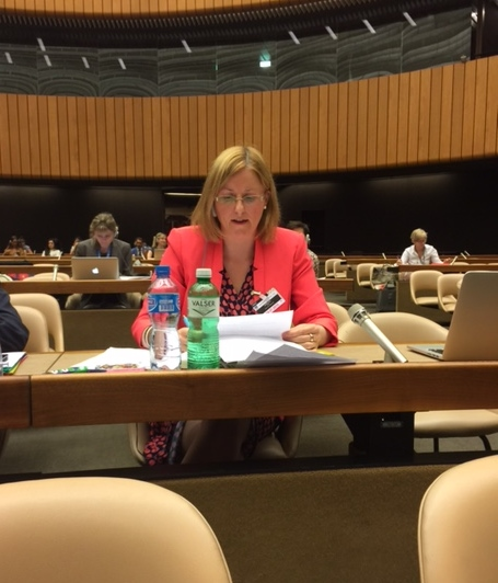 14.07.2015: Pro Life Campaign addresses UN Human Rights Committee in Geneva today